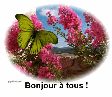 Toc Toc 6 Cafe De L Amitie Et Des Rencontres 32245 Messages
