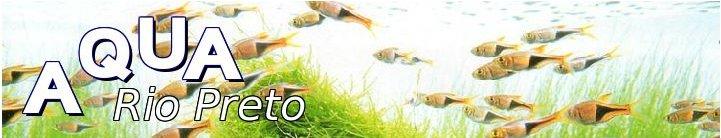Aquarismo Rio Preto