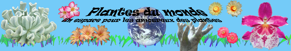 Plantes du Monde