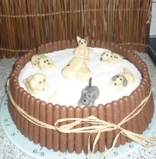 joyeux anniversaire gateau chien