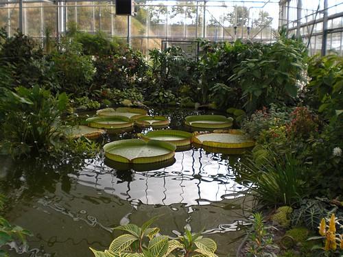 Les jardins suspendus le havre - Jardin fleurie le havre ...