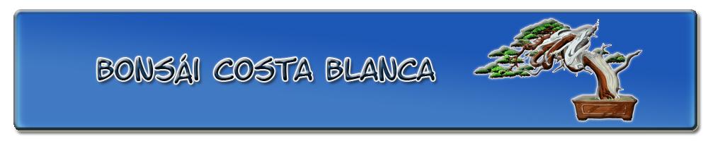 Bonsái Costa Blanca