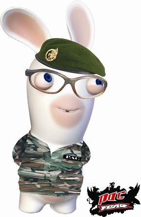 Les lapins - Lapin cretin image ...