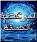 https://i24.servimg.com/u/f24/13/14/85/65/21117110.png