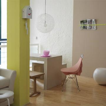 Cuisine ouverte sur salon et sejour couleur des murs for Cuisine couleur cappuccino