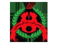 نادي الريان القطري