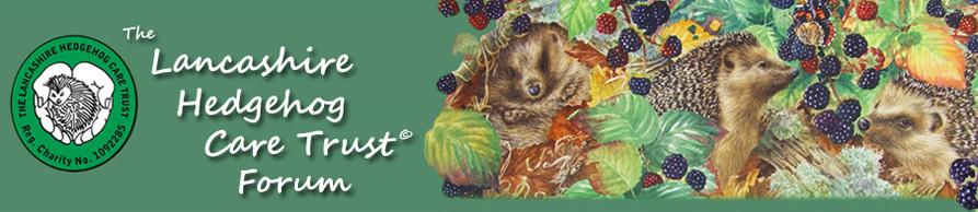 The Lancashire Hedgehog Care Forum