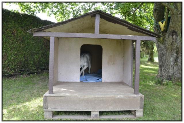 Comment faire une niche pour chien avec des palettes - Niche pour chien avec palette ...