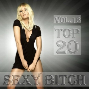 Sexy Bitch vol.16 (2010)