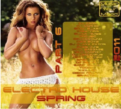 VA - Electro House Spring Part 6 (2011)