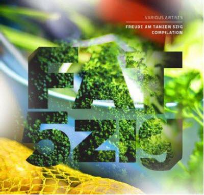 VA - Freude Am Tanzen 5zig (2011)