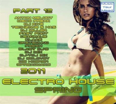 VA - Electro House Spring 2011 (Part 12)