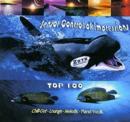 VA - Sensor Control Of Impressions TOP Chill 100 (2010)