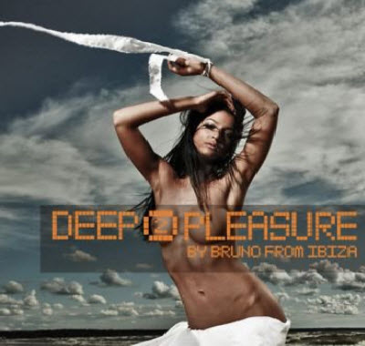 VA - Deep Pleasure Vol.2 (2011)