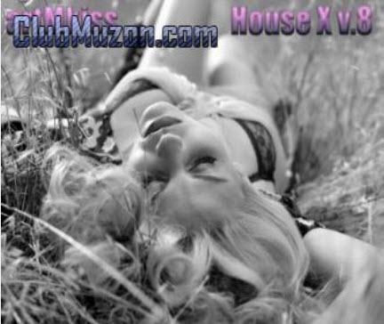 House X v.8 (2010)