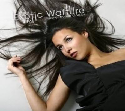 VA - Exotic Wafture #14 (2011)