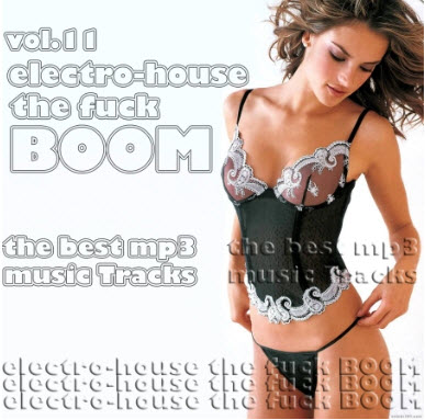 Electro-House The Fuck boom vol.11 (2010)