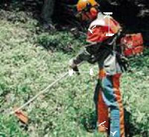 Decespugliatori impugnatura tradizionale a manubrio o for Diserbante per erbacce