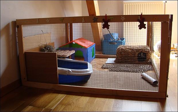 Pin cage exterieur pour poule on pinterest for Cage lapin nain exterieur