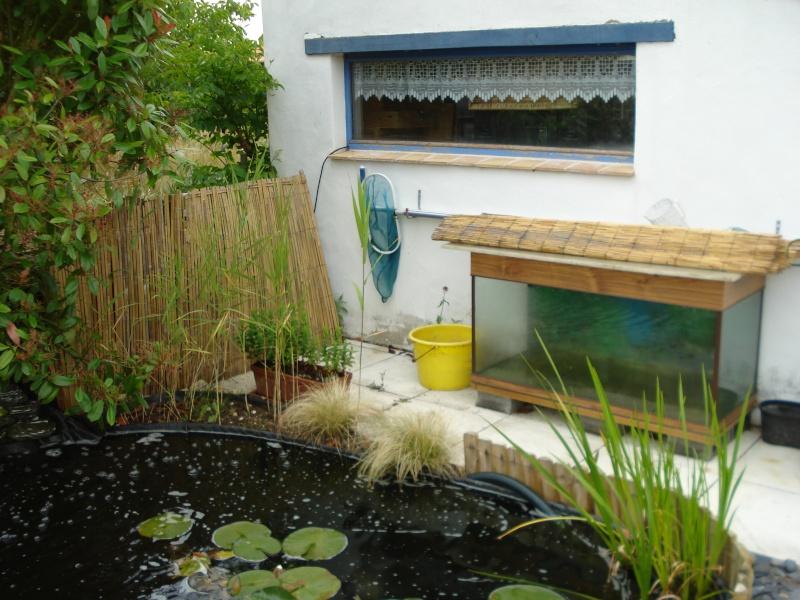 Mon bassin de 7 m3 for Filtre bassin maison