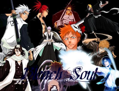 Bleach Soul