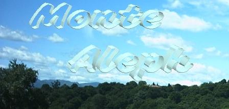 Monte Aleph