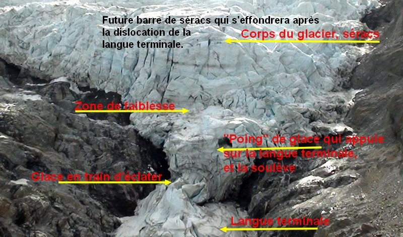 <&nbsp;image&nbsp;: http://i24.servimg.com/u/f24/16/34/66/55/bosson12.jpg&nbsp;>