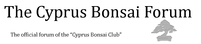 The Cyprus Bonsai Forum