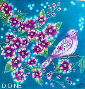 didine71.jpg