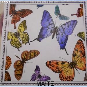 maitzo56.jpg